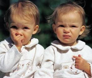 Pergotime tvillingar